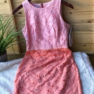 Maggy London Lace Dress Brand new size 2 💗💗